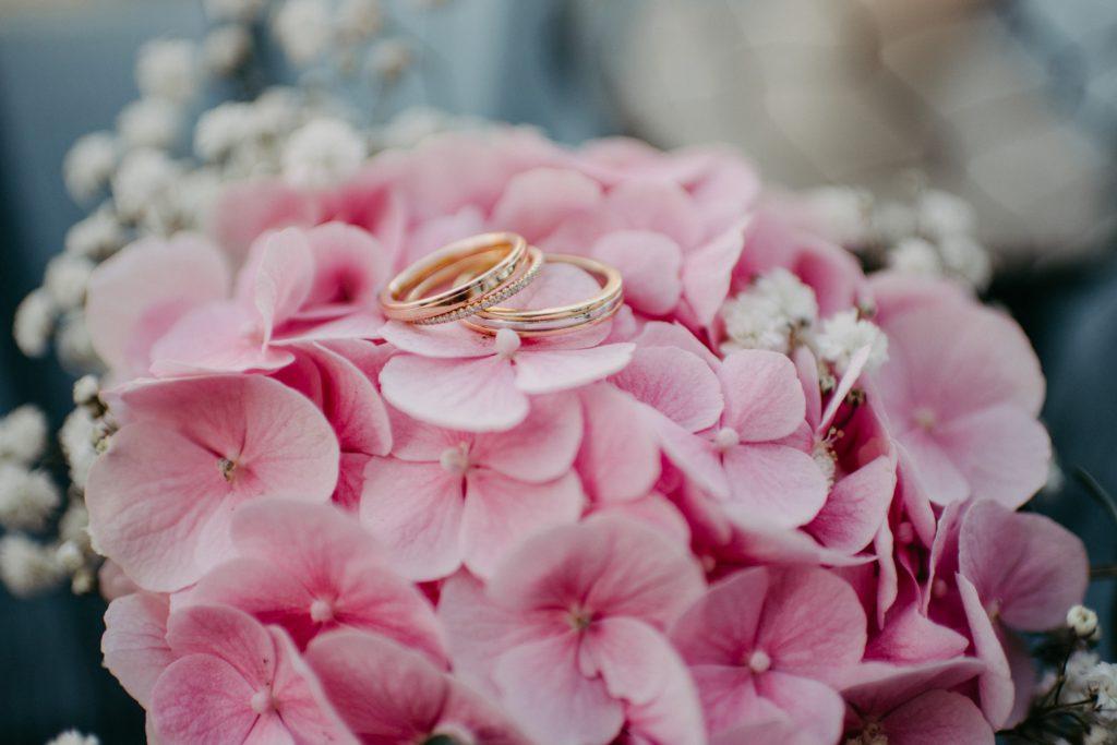 Tricolor Eheringe auf einer pinken Hortensie, Foto von der Hochzeitsfotografin Daria Becker, Genuine Bonds