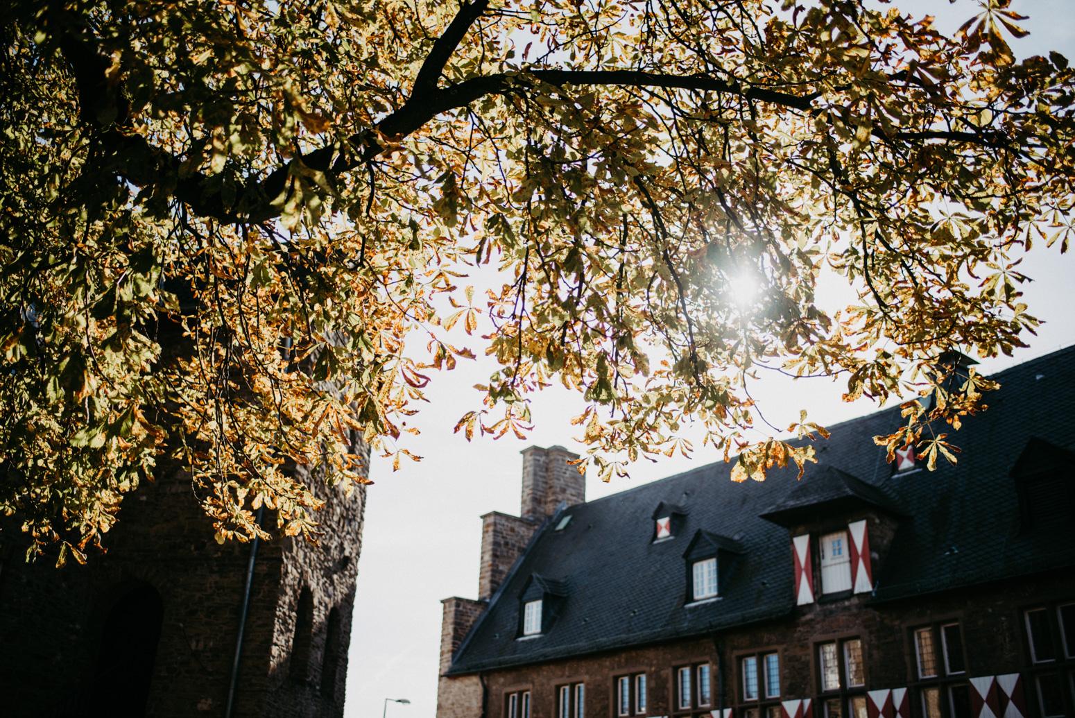 Schloss Broich im Herbst